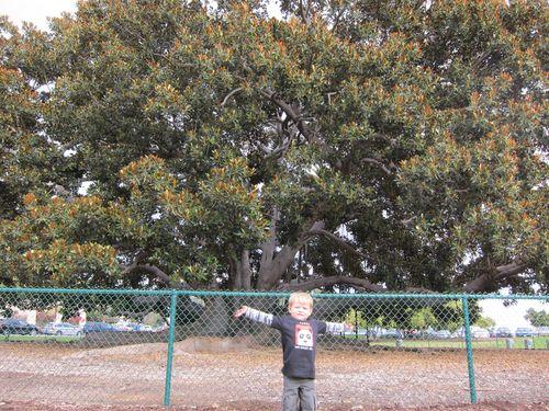 San Diego 2010 179