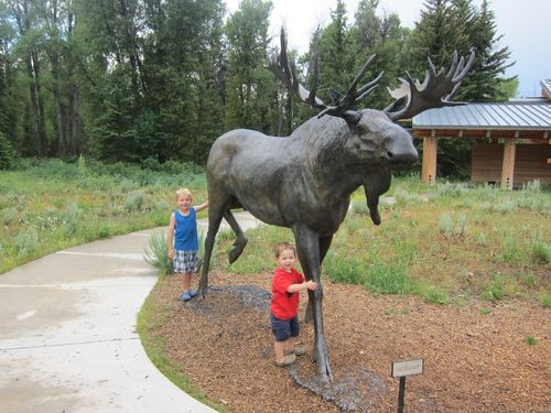 Montana trip 2013 068